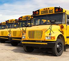 School Bus_NEWSFEED