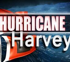 hurricane harvey_NEWSFEED